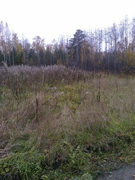Продам земельный участок под ведение садоводства Рябинино - Фото 1