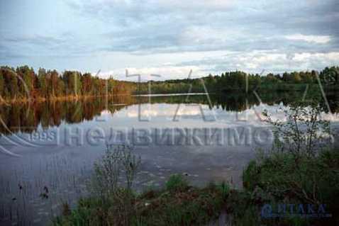 Продажа участка, Узьмино, Стругокрасненский район - Фото 2