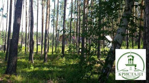 Продажа дома, Оськино, Шегарский район - Фото 5
