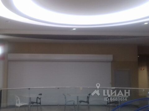 Аренда торгового помещения, м. Приморская, Проспект Малый . - Фото 2