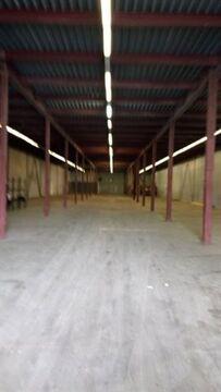 Сдам складское помещение 1300 кв.м, м. Купчино - Фото 3