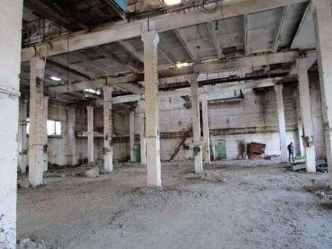 Продаю производственное помещение Ржевка с - Фото 2