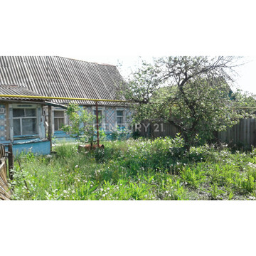 Дом- особняк в центре р.п.Знаменка - Фото 2