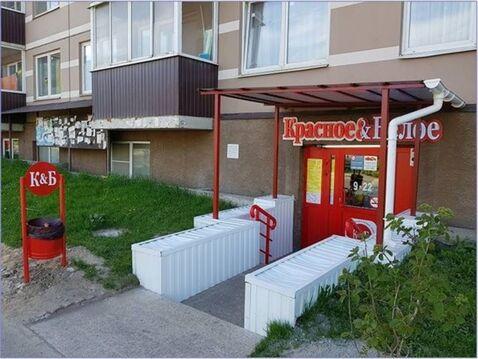 Продам торговое помещение 139 кв.м, м. Девяткино - Фото 4