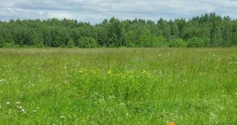 Продажа: земельный участок 710 соток, Кувшиново - Фото 1