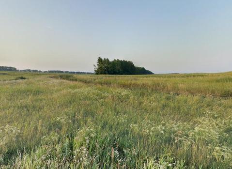 Продам: земля 200 сот, 10 км от города - Фото 1