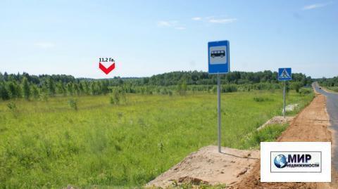 Земельное угодие 11,2 Га. на Новорижском шоссе. 125 км. от МКАД. кфх. - Фото 1