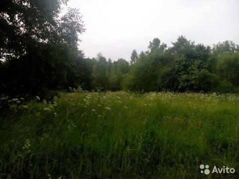 Орехово + 10 км , Крутая Гора - Фото 2