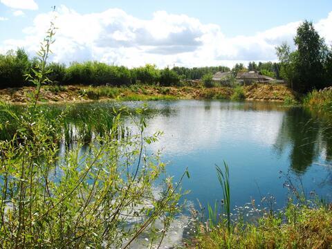 Предлагаю для организации платной рыбалки пруд 1300 кв.м на 1 Га земли - Фото 5