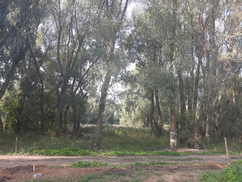 Продаю земельный участок в черте города - Фото 1