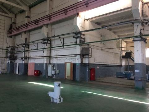 Сдам производственное помещение 2800 кв.м. - Фото 1