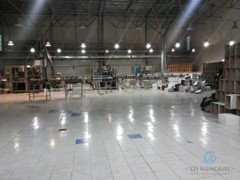 Продам производственный комплекс 4500 кв.м. в г. Петушки - Фото 1