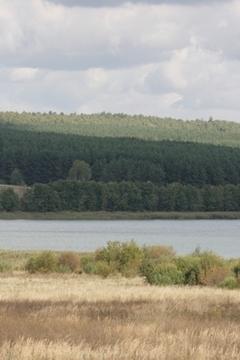 Зем.участок от собственника вблизи большого озера, д.Инютино - Фото 2