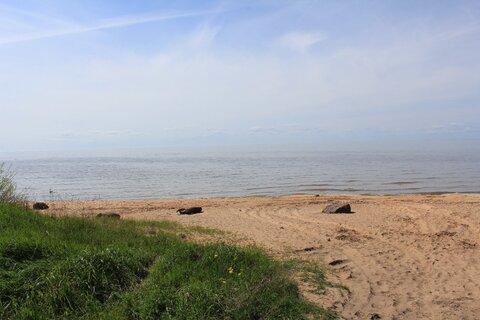 Недорогой участок на Чудском озере - Фото 4