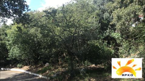 Продажа земельного участка в Алупке в 10 минутах от моря. - Фото 5