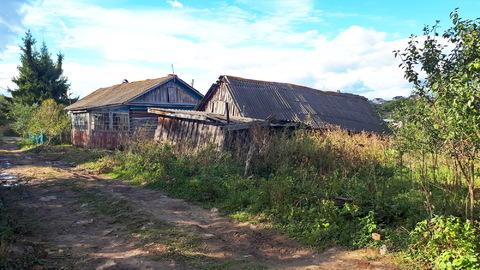 Дом с газом на 38 сотках у Озера, речки и леса, в 5км от пос.Заокский - Фото 3