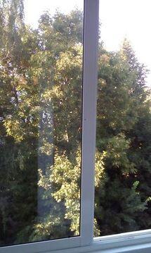 Продажа квартиры, Сергиев Посад, Сергиево-Посадский район, Хотьковский . - Фото 1