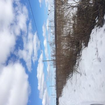 Участок 30 соток на землях населенных пунктов - Фото 5