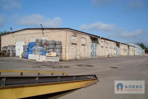 Аренда склада пл. 350 м2 Селятино Киевское шоссе в складском комплексе - Фото 4