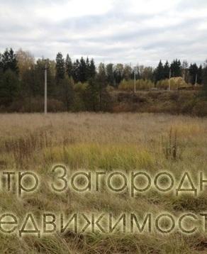 Участок, Можайское ш, Минское ш, 27 км от МКАД, Малые Вяземы, В . - Фото 2