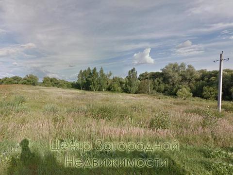 Участок, Каширское ш, 160 км от МКАД, Куньи Выселки, деревня. .