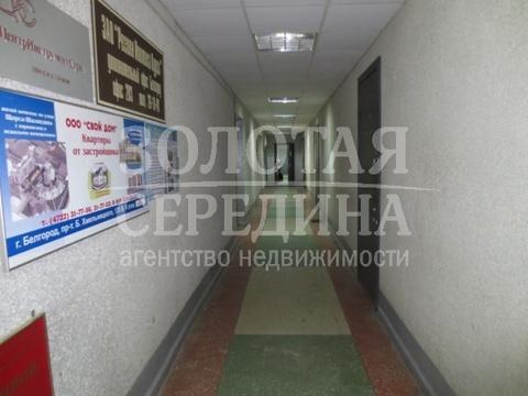Сдам помещение под офис. Белгород, Богдана Хмельницкого п-т - Фото 3