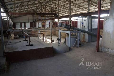 Аренда производственного помещения, Ставрополь, Ул. Коломийцева - Фото 2