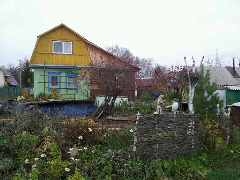 Продам сад Карпово - Фото 5