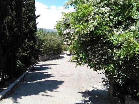 Ровный земельный участок в Ялте, Массандра, 1 сотка. - Фото 4