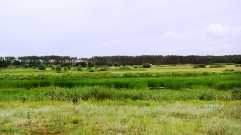 Продаю участок 10 Га под водно-спортивную базу в Воронеже на р.Усманке - Фото 4