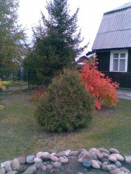Продам дом на Байкальском тракте, СНТ Октябрьское - Фото 1