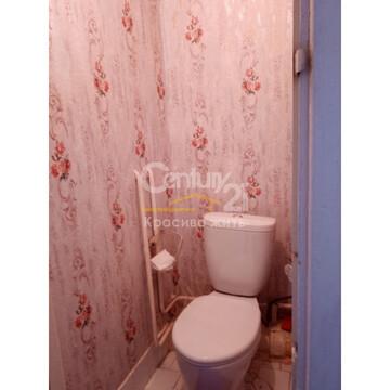 1к квартира Павловский тракт 267 - Фото 4