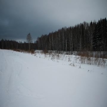 12 соток в д. Барыбино Домодедовского района - Фото 5