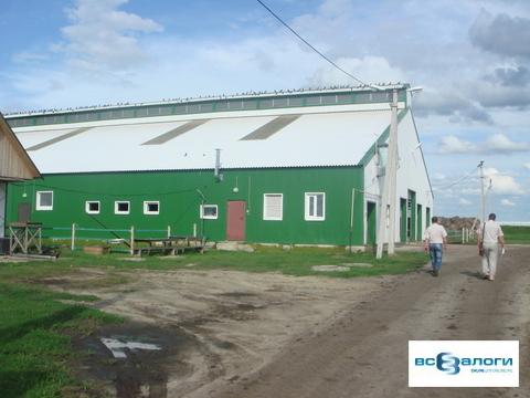Продажа производственного помещения, Бондарский район, СПК - Фото 1