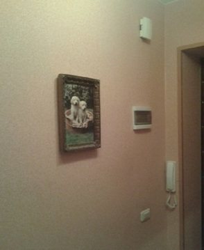 Продам 3 ип в Октябрьском районе - Фото 3