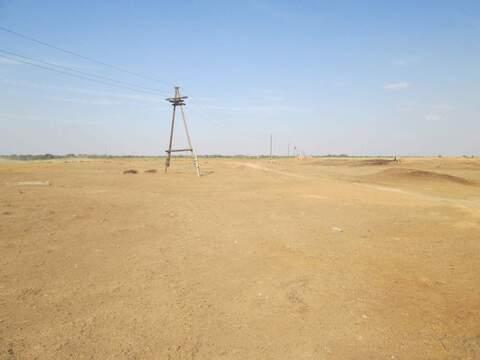 Продается земля 53000 соток, село Пришиб - Фото 3