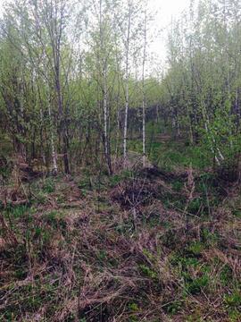 Продается земельный участок, Большое Петровское, 10 сот - Фото 4