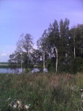 Купить земельный участок в деревне Захарьино, Новгородского района - Фото 4