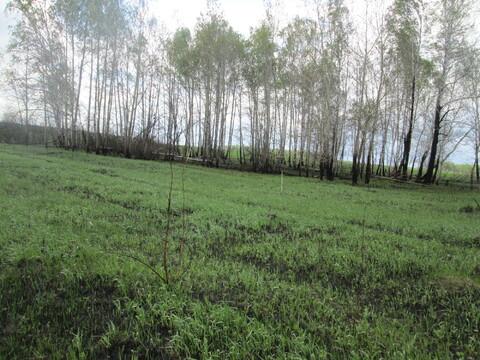 Земельный участок в Красноармейском районе поселок Лазурный - Фото 5