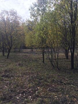 24 сотки у леса, Прописка, д. Маренкино - Фото 3