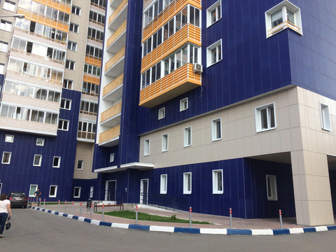 1к квартира в Правдинском - Фото 1