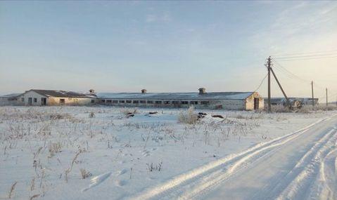 Аренда псн, Ленино, Касимовский район, Колхозная - Фото 1