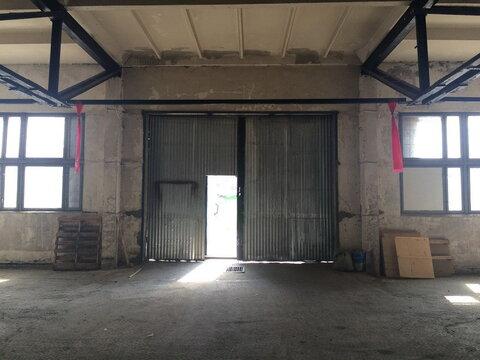 Сдается склад в д. Загорново. Площадь 3250м2 - Фото 3