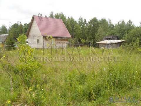 Продажа участка, Ивангород, Кингисеппский район, 1 линия - Фото 4