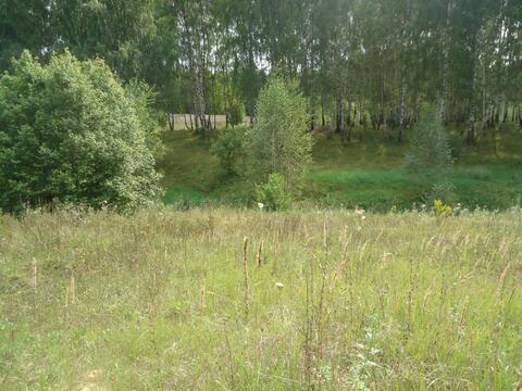 Земельный участок 38 соток, д.Дубёнки, Богородский р-н - Фото 3