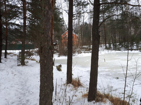 Участок, Ярославское ш, 20 км от МКАД, Комягино, Коттеджный поселок . - Фото 3
