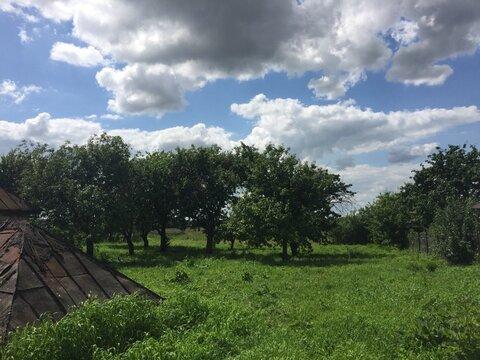 Продам участок в п. Сараи Рязанская области - Фото 3