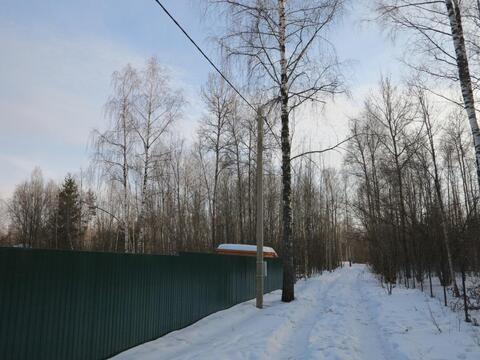 12 сот с лесными деревьями. Газ, канализация.Земли населенных пунктов. - Фото 1