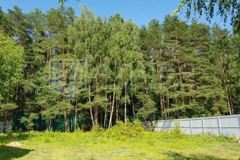 Лесной участок 20 сот. - Фото 1