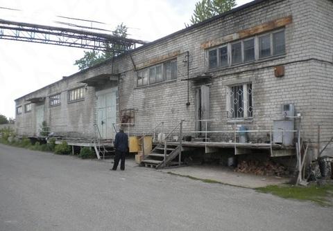 Продается производственный комплекс - Фото 4